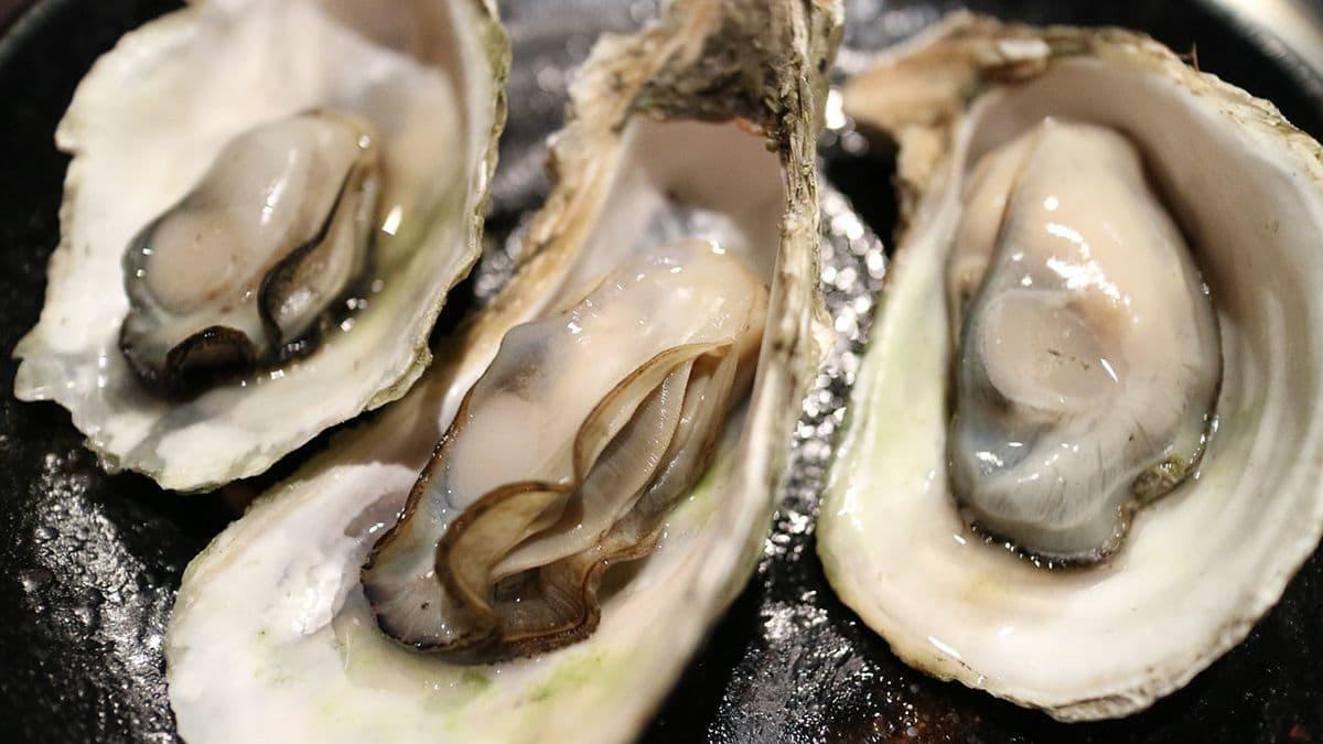 Hoe weet je of een oester goed is?